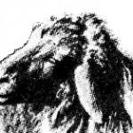juhfej.1
